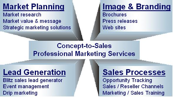 Strategic marketing plan michigan company for Advertising sales companies